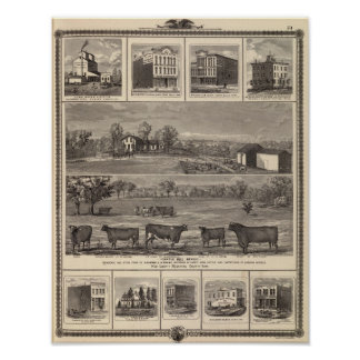 Residences, farm, businesses in W Liberty, Ackley Poster