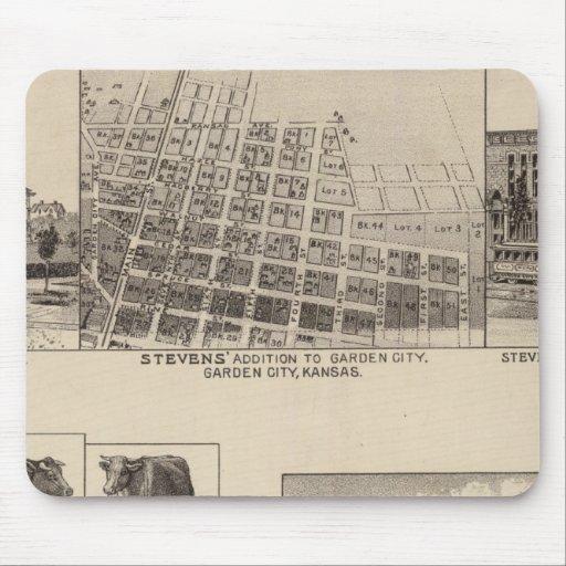 Residences in Kansas Mouse Pad