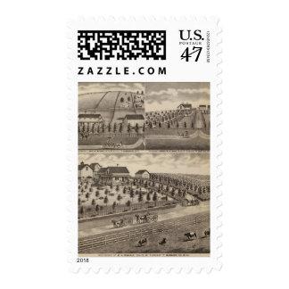 Residences in Mt. Pleasant, Minnesota Stamp