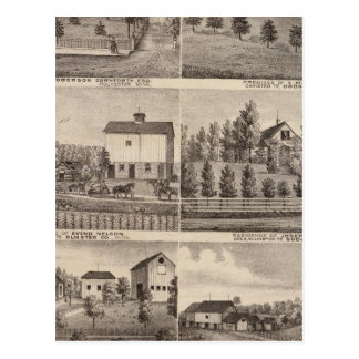 Residences in Rochester and in Dodge, Minnesota Postcard