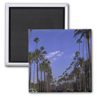 Residential Rodeo Drive, Beverly Hills, California 2 Inch Square Magnet