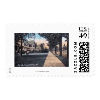 Residential Scene on Riverside Drive Postage