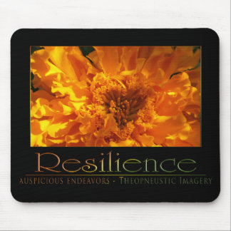 Resilience Mouse Pad