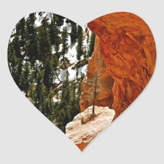 RESILIENT PINE TREE ON RED SANDSTONE ROCK HEART STICKER
