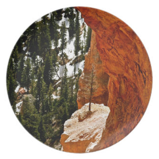 RESILIENT PINE TREE ON RED SANDSTONE ROCK MELAMINE PLATE