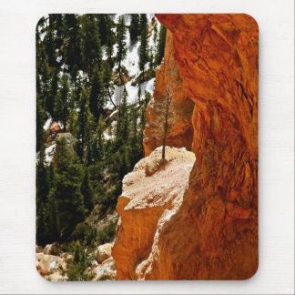 RESILIENT PINE TREE ON RED SANDSTONE ROCK MOUSE PAD