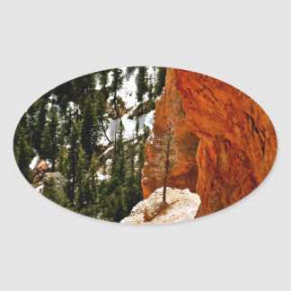 RESILIENT PINE TREE ON RED SANDSTONE ROCK OVAL STICKER