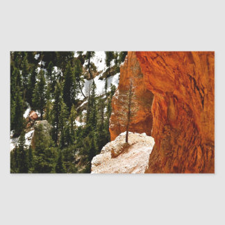 RESILIENT PINE TREE ON RED SANDSTONE ROCK RECTANGULAR STICKER