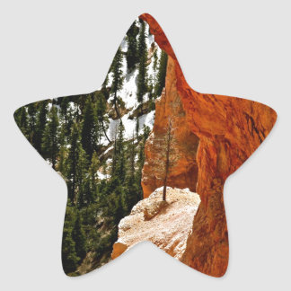 RESILIENT PINE TREE ON RED SANDSTONE ROCK STAR STICKER