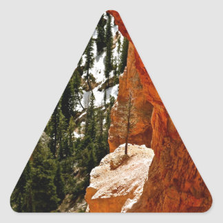 RESILIENT PINE TREE ON RED SANDSTONE ROCK TRIANGLE STICKER