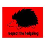 Respect The Hedgehog Postcard