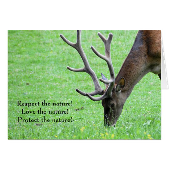 Respect the Nature! Card