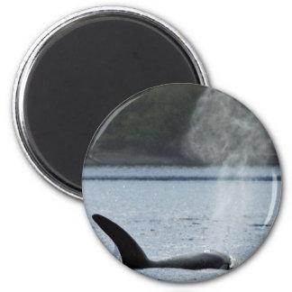 Respiración de la orca: GRANDE Imán Redondo 5 Cm