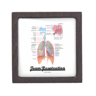 Respiración del equipo (sistema respiratorio) cajas de regalo de calidad