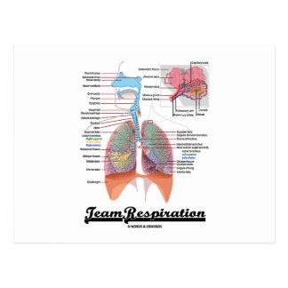 Respiración del equipo (sistema respiratorio) postales