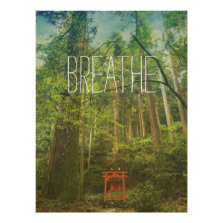 Respire la naturaleza de los árboles forestales de póster