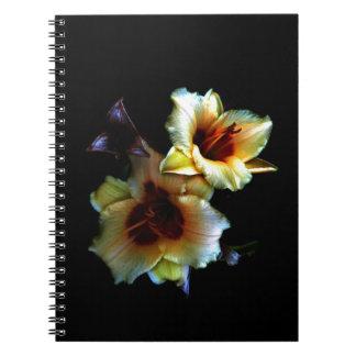 Resplandor amarillo de los lirios cuadernos
