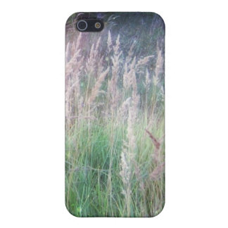 Resplandor crepuscular de la hierba del bosque iPhone 5 cobertura