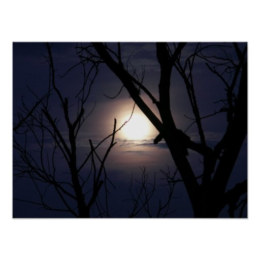 Resplandor de la luna poster