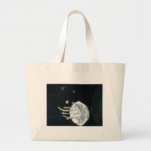 Resplandor de las medusas bolsas