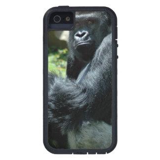 Resplandor del gorila iPhone 5 carcasa