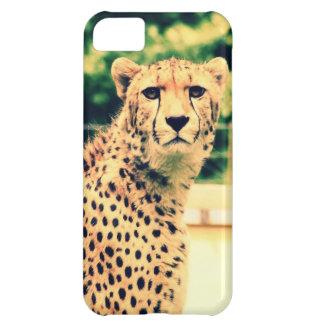 Resplandor del guepardo carcasa iPhone 5C