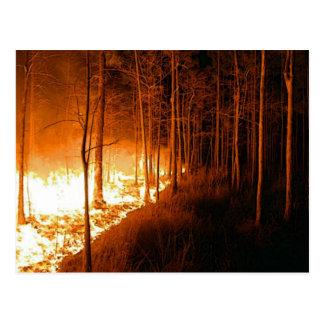 Resplandor del incendio fuera de control tarjeta postal