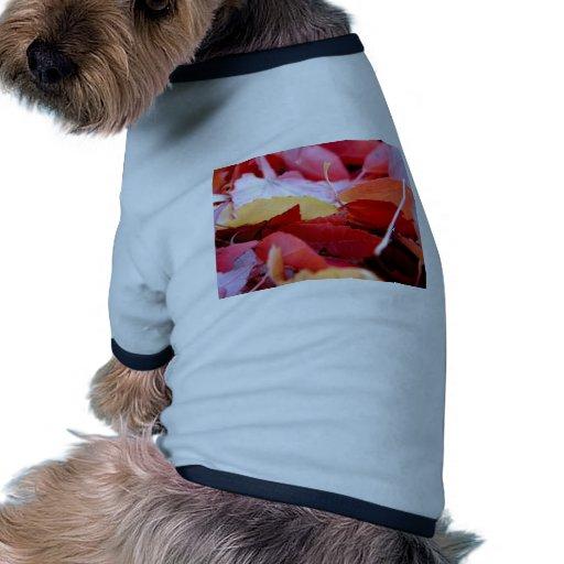 Resplandor del otoño camiseta con mangas para perro
