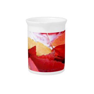 Resplandor del otoño jarras para bebida