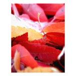 Resplandor del otoño membrete