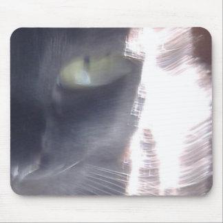 Resplandor del Sun-Gato Alfombrilla De Raton
