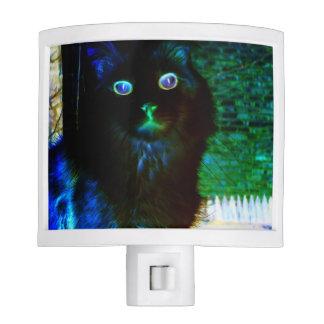 Resplandor en la luz oscura de la noche del gato