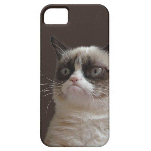 Resplandor gruñón del gato iPhone 5 cárcasa