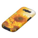 Resplandor solar:  Caso del ambiente de la galaxia Samsung Galaxy S3 Coberturas