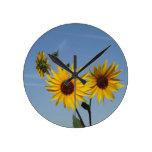 Resplandor solar reloj