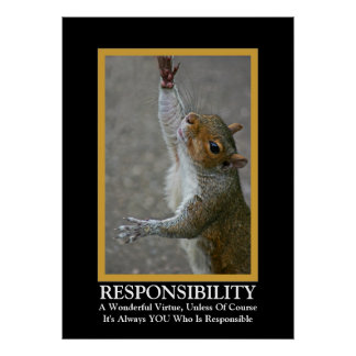 Responsibility ~ Fun Demotivational Poster