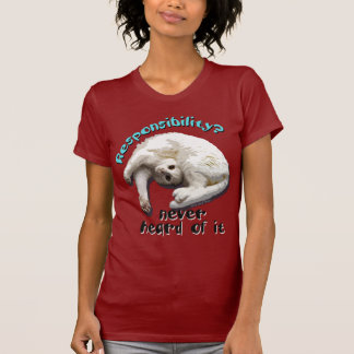 Responsible Cat Tee Shirt