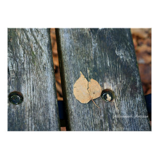Rest a While - Still Life Photo - Leaf on a Bench Poster
