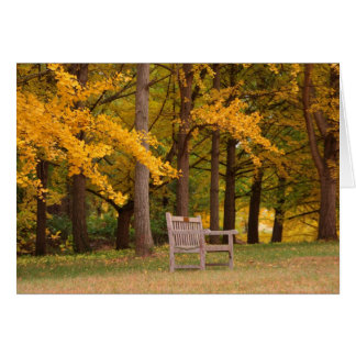 Rest For Awhile Greeting Card