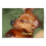 Rest now... greeting card
