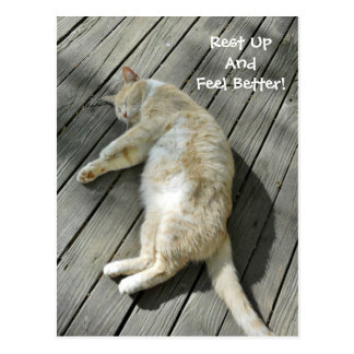Rest Up Feel Better Cute Cat Get Well Custom Postcard