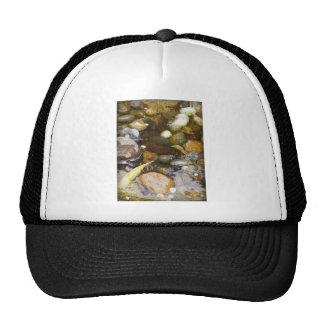 Restful Pond Hats