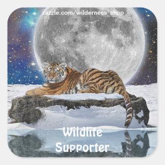 Resting Amur Tiger, Moon & Snow Wildlife Stickers