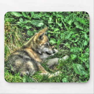 Resting Baby Wolf Pup Wildlife Photo Mouse Pad