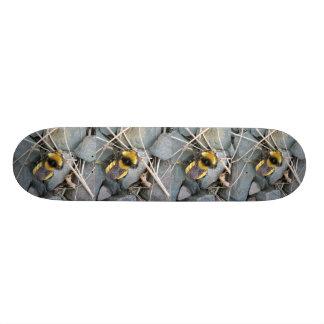 Resting Bee Skateboard