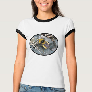 Resting Bee Womens Shirt