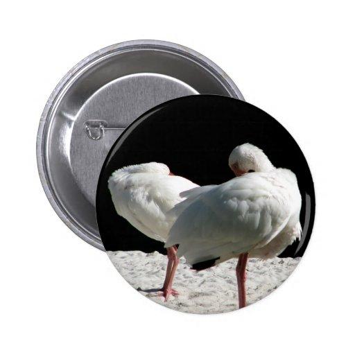 Resting Birds 2 Inch Round Button
