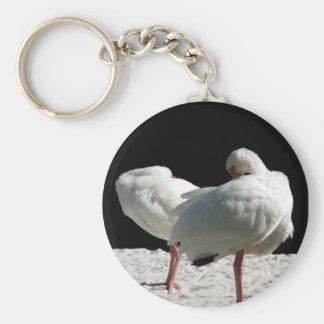 Resting Birds Keychain