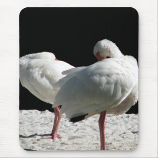 Resting Birds Mouse Pad