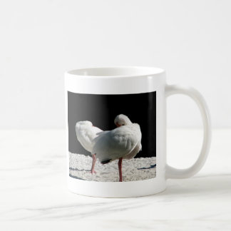 Resting Birds Mugs